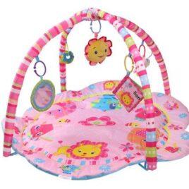 Hrací deka The Pinky House